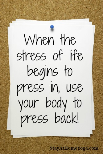 The Off Switch for Stress